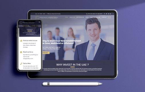 Profikuo Consultancy -Website